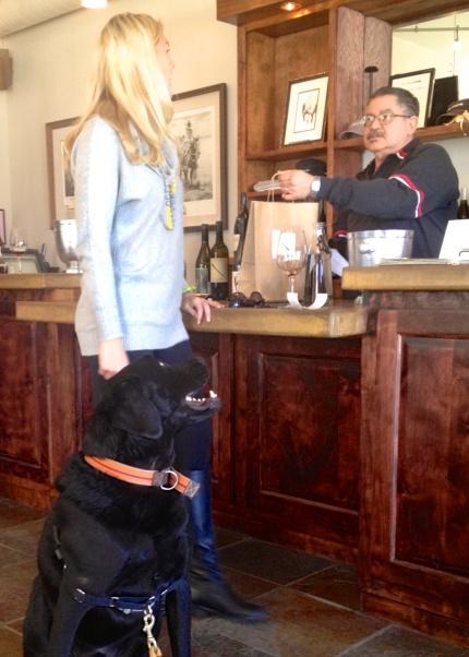Chumley at winery