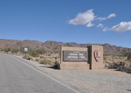 Palm Springs 6